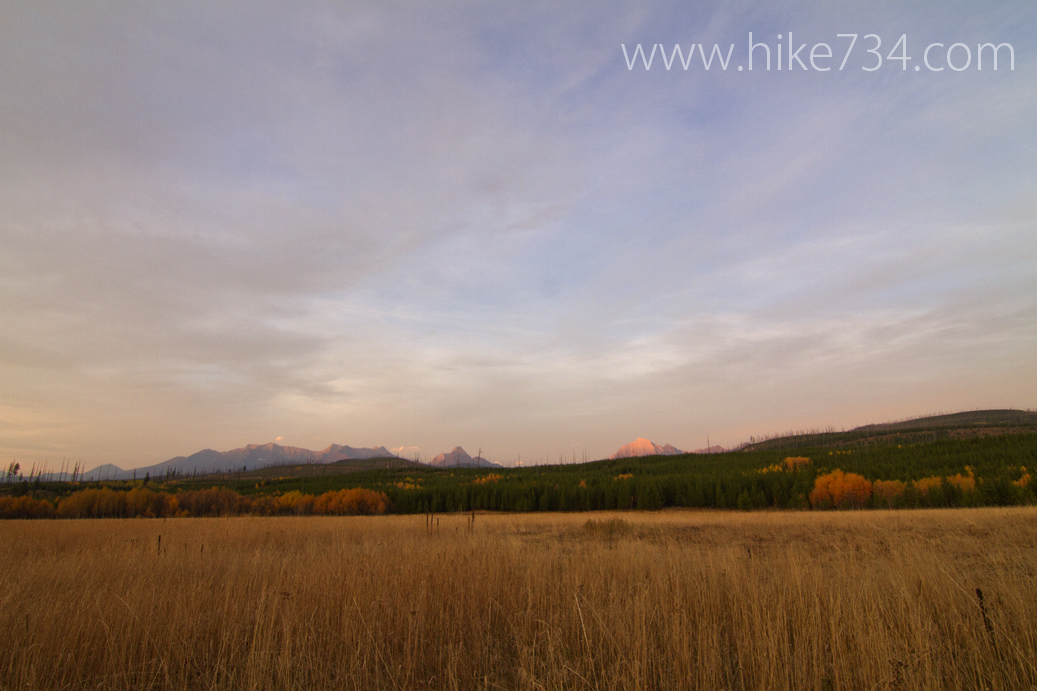 North Fork Meadows