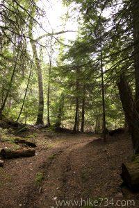 Avalanche Trail