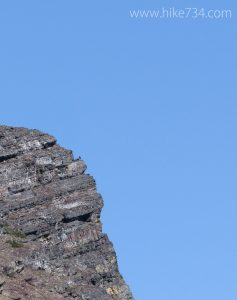 Golden Eagle on Cliff