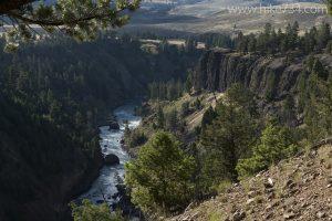 Yellowstone River Picnic Area